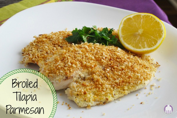Broiled Tilapia Parmesan is a fast family dinner favorite
